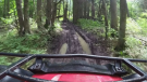 All terrain vehicle (ATV) - FILE PHOTO