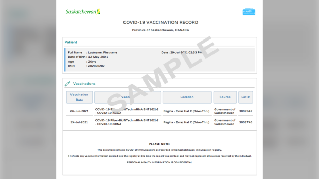 A printable COVID-19 vaccination record is available for Saskatchewan residents on the eHealth website. (Supplied: Government of Saskatchewan)