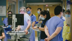 medical staff, doctors, nurse