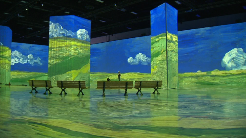 You can take in the stunning Beyond Van Gogh exhibit while practicing yoga at the BMO Centre