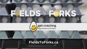 F2F: Egg Farmers of Ontario