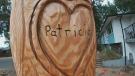 Sawatsky Sign-Off- Patricia's Tree