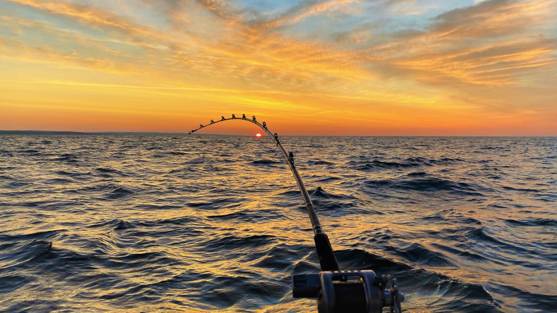 Caught two King Salmons and two rainbow trout on a charter fishing trip early in the morning as the sun came up on Lake Ontario. (Rob Patten/CTV Viewer)