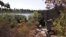 Hike The Island: Swan Lake