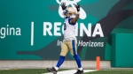 Winnipeg Blue Bombers wide receiver Nic Demski (10) celebrates after a touchdown during second half CFL football action against the Saskatchewan Roughriders, in Regina, Sunday, Sept. 5, 2021. (THE CANADIAN PRESS/Kayle Neis)