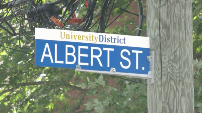 Albert Street, in Kingston, Ont.'s University District. (Kimberley Johnson / CTV News Ottawa)