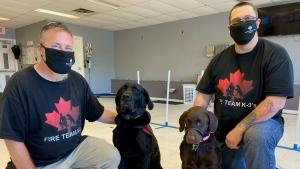 Left to right: Jeff Hinch & his service dog Judah, Louis Pelletier & his service dog Bristol. (Dylan Dyson / CTV News Ottawa)