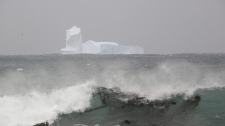 In this photo released by the Australian Antarctic Division, an iceberg is seen at Sandy Bay on Macquarie Island's east coast, in the Southern Ocean 1,500 kilometres southeast of Tasmania, Australia, on Nov. 16, 2009. (AP Photo/Australian Antarctic Division, Eve Merfield)