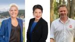 Bonita Zarrillo, Nelly Shin and Will Davis are shown in photos from their campaign websites.