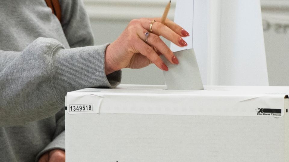 A voter casts their ballot