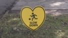sarnia speed limit