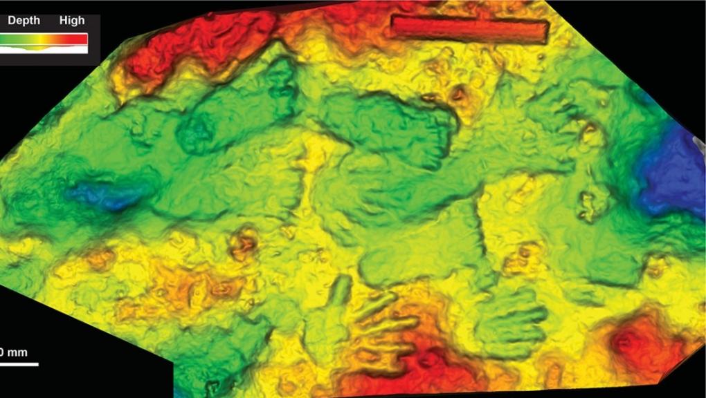3D scan of oldest artwork