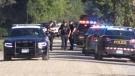 Several police officers on scene of a fatal crash west of Exeter Ont. on Thursday, Sep. 16, 2021. (Sean Irvine / CTV London)