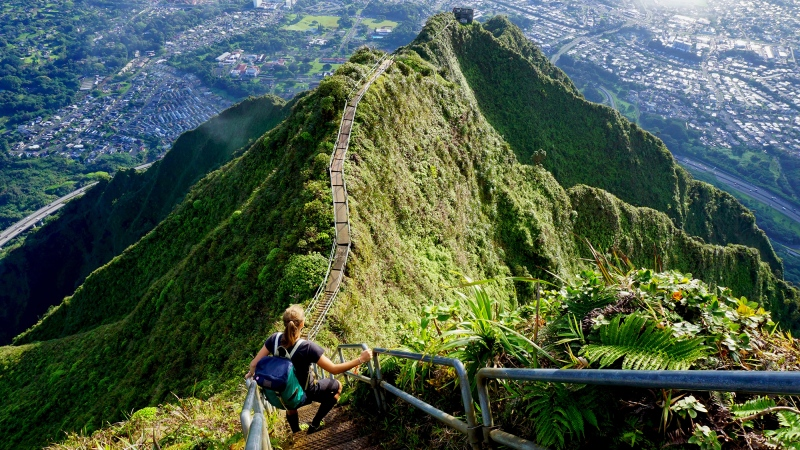 Hawaii's famous Haiku Stairs, sometimes called the Stairway to Heaven, are likely to be removed next year. (Adobe Stock)