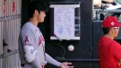 Los Angeles Angels designated hitter Shohei Ohtani plays with a ball in the dugout during the second inning of a baseball game against the Chicago White Sox in Chicago, Sept. 16, 2021. (AP Photo/Nam Y. Huh)