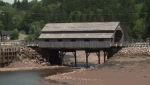 Covered bridge in N.B. gets new lease on life