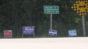 Simcoe North candidate signs line the road near Tay Township, Ont., on Fri., Sept. 17, 2021 (Mike Arsalides/CTV News)