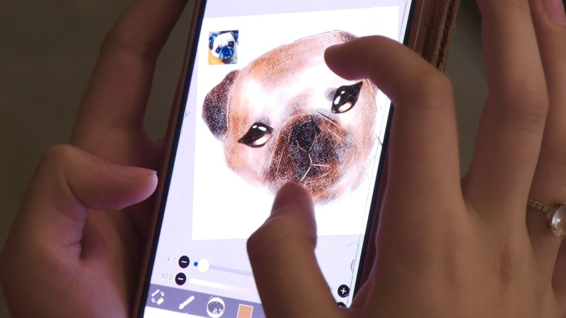 A Calgary teenager is raising money for an animal rescue by creating digital drawings of people's pets