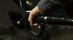 A gas pump fills up a car's tank in this file photo. (Skitterphoto / Pexels)