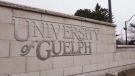 The University of Guelph in Guelph, Ontario is shown on Friday March 24, 2017. THE CANADIAN PRESS/Hannah Yoon