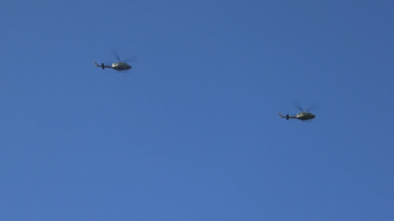 Griffon helicopters