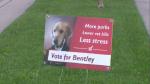 vote bently