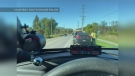 Speeder caught in Innisfil