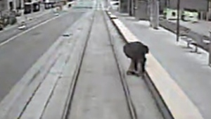 New videos show near-misses with LRT trains in Ont