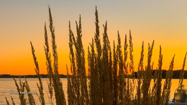 Sunset in Glen Walter, Ontario. Last weekend of the summer!  (Kelty Grant/CTV Viewer)