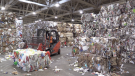 Bales of recyclables at Bluewater Recycling Association in Huron Park, Ont., Sept. 21, 2021. (Scott Miller / CTV News)
