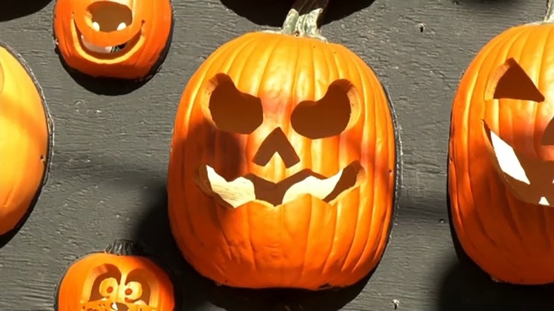 A new family-friendly show dedicated to the jack o' lantern is opening at WinSport just in time for Halloween