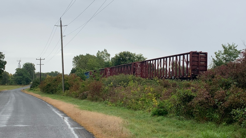 CN Rail is reporting no injuries after a rail car derailed in Amherstview, Ont. on Wednesday, Sept. 22, 2021. (Kimberley Johnson / CTV News Ottawa)