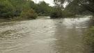 Rainfall, flood warnings for southwestern Ont.