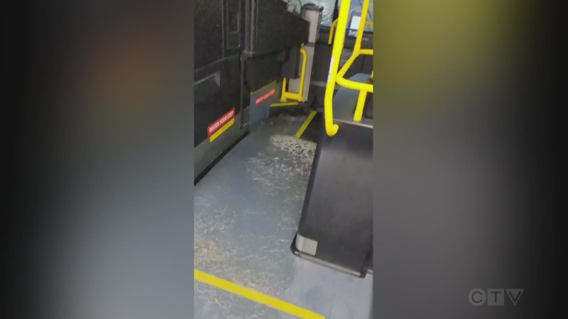 Flooded Bus