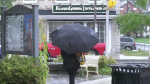 A person walking in the rain in Arnprior on Wednesday, Sept. 22, 2021. (Dylan Dyson/CTV News Ottawa)