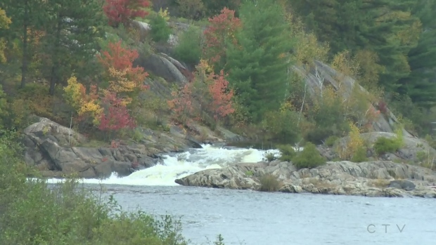 Leaves change beside water rapids.