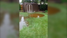 Backyard water on Mount Royal Dr in South Windsor, Ont. (Courtesy Dave Meloche)