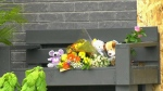 Aylmer father, daughters dead in double murder su