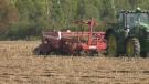 A look at a long-time northern Ontario potato farm