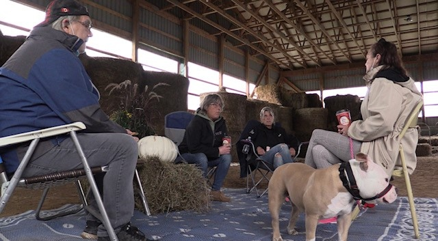 Ralph and Bonnie Quarry, and their dog Lulu, discuss their animal control issues with Deanna Irvin-Wheeler and Robyn Minifie near Priceville, Ont. (Scott Miller / CTV News)
