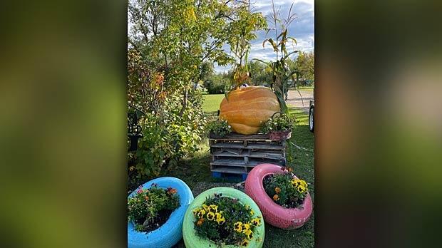 Pumpkin fall display. Photo by Karen Gottfried.