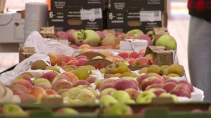 Apples on display at downtown Timmins' Fall Fest. Sept. 23/21 (Sergio Arangio/CTV Northern Ontario)
