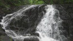 Waterfall in Sault Ste. Marie. Sept. 24/21 (Christian D'Avino/CTV Northern Ontario)
