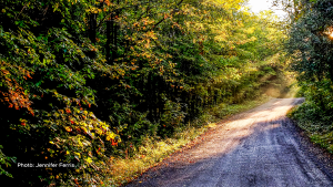 Back roads are the best! Quarry Rd, outside of Carleton Place, Ont. (Jennifer Ferris/CTV Viewer)