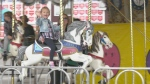 Jenna Ross and her daughter on the carousel at the Carp Fair. (Dave Charbonneau/CTV News Ottawa)