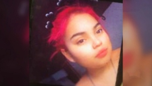 Family renews calls for missing woman