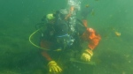 Training for underwater rescues