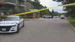 Peel police are investigating an altercation in Mississauga that left one man dead.