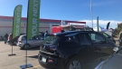 Electric cars gathered in the Canadian Tire parking lot in Regina's east end on Sept. 25 to celebrate National Drive Electric week. (Mackenzie Read/CTV News)