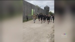 Charity run raises funds for Indigenous sports